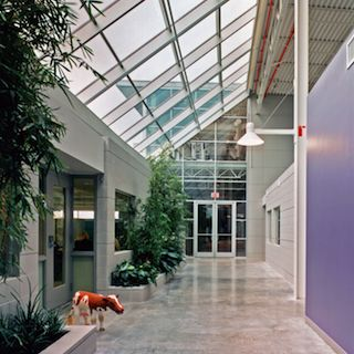 "Gen1 Architectural Group:The Greenhouse - The ""Street"""